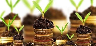 Belastingstelsel vergroenen om klimaatverandering tegen te gaan