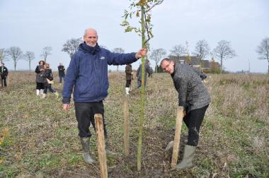 boom planten tegen klimaatverandering