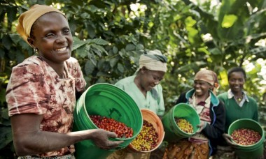 Fairtrade CO2 compensatie